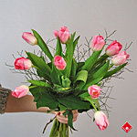 Bouquet de tulipes canadiennes fraîchement coupées